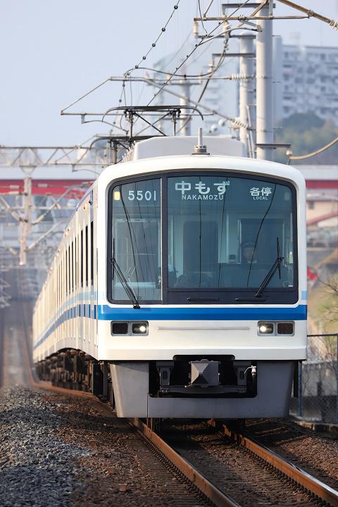 Semboku5000-11(栂・美木多)s