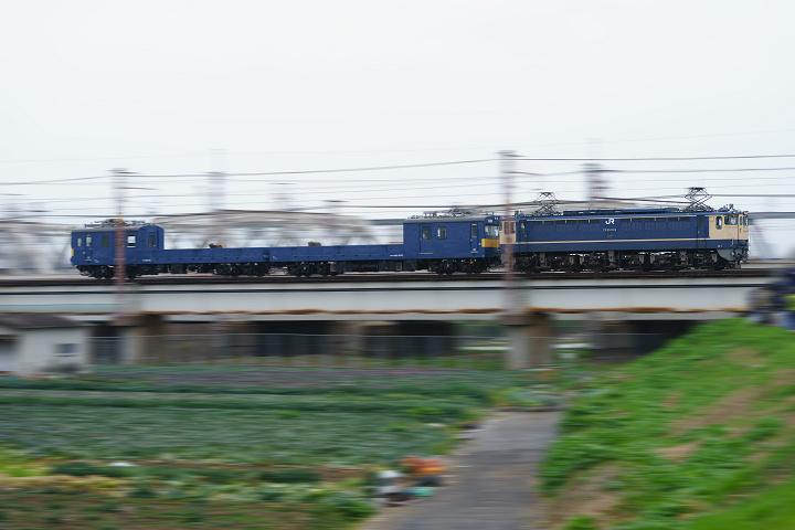 クモル145-309s