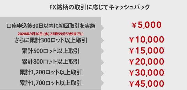 IG campaign FX-min (1)