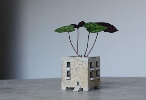 マンションに見える植木鉢01