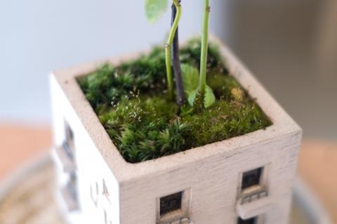 マンションに見える植木鉢04