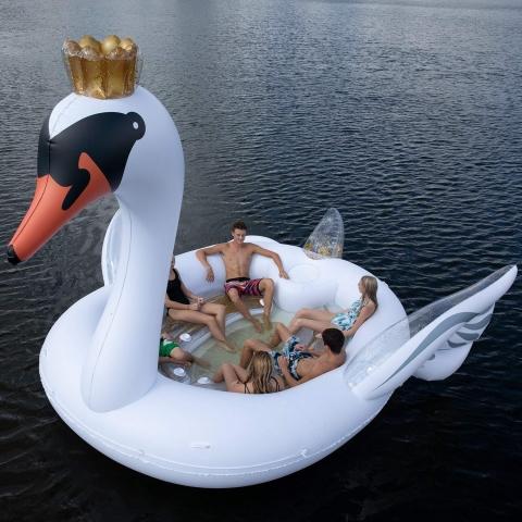 白鳥のボート01
