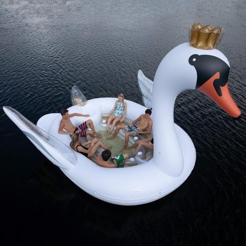 白鳥のボート02