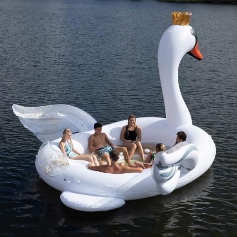 白鳥のボート04
