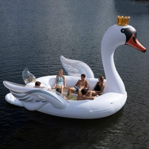 白鳥のボート03