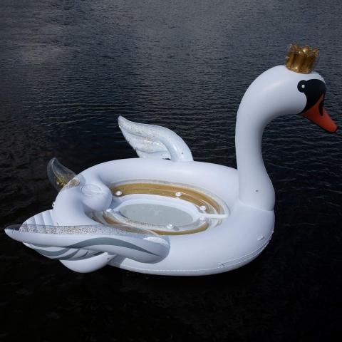 白鳥のボート05