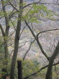 林道が崩壊している191120