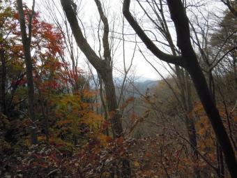樹の間から富士山見えていたが191206