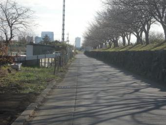 土手の下の道200102