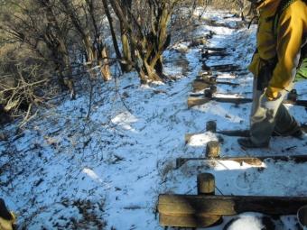 古い雪の上に昨日の雪200105