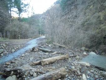 不動尻から神山隧道までの道-2-20105