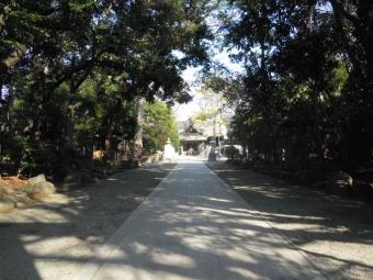 前鳥神社200114