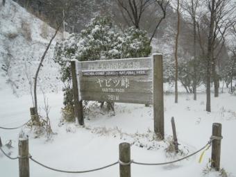 ヤビツ峠200118