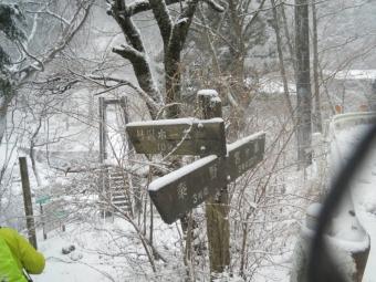 吊り橋を渡って200118