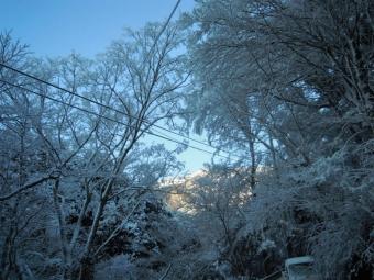 朝日に輝く山200119