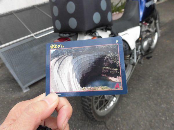 CIMG84891aa.jpg