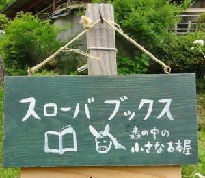 丸森ロバ1