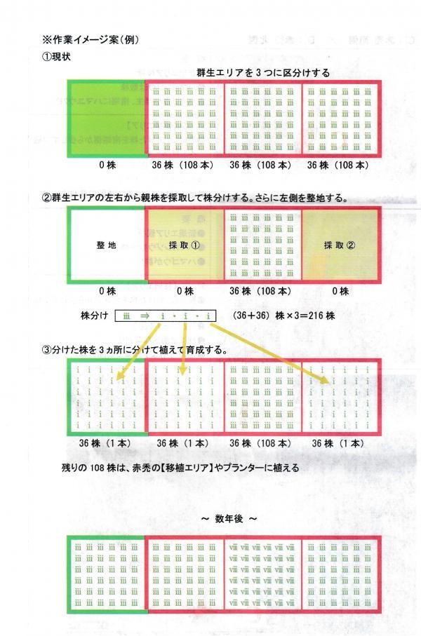 IMG_20200801_0013_convert_20200801082713.jpg