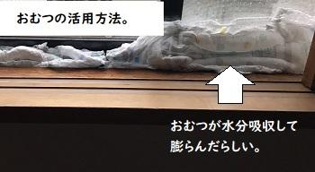 台風たいむり3