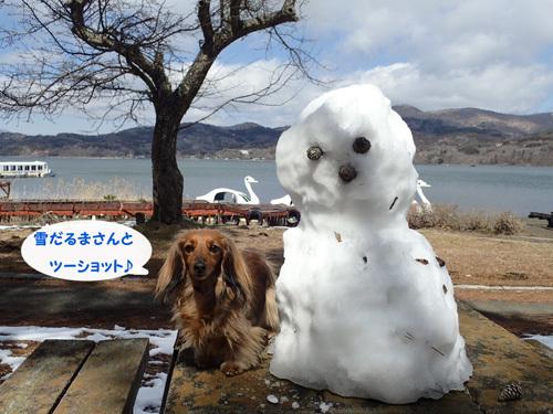 yamanakako18.jpg