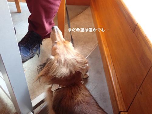 yamanakako32_202006112222086ba.jpg