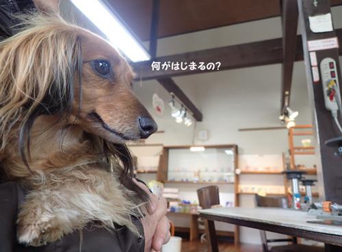 yamanakako44.jpg