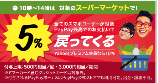 paypayspmct34.png