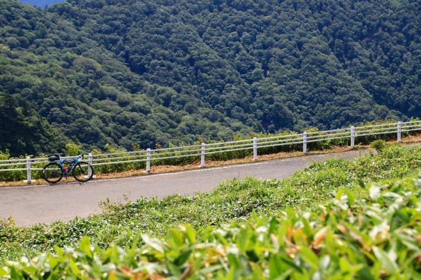 bindamori-29.jpg