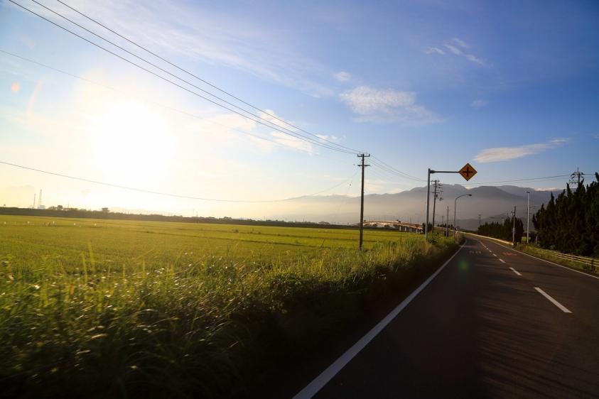 bindamori-3.jpg