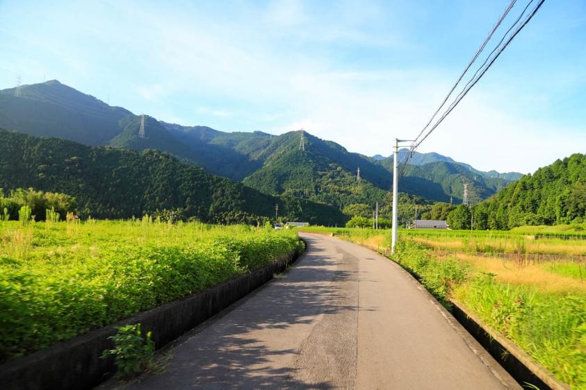 bindamori-8.jpg