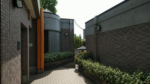 kamiyugi02.jpg