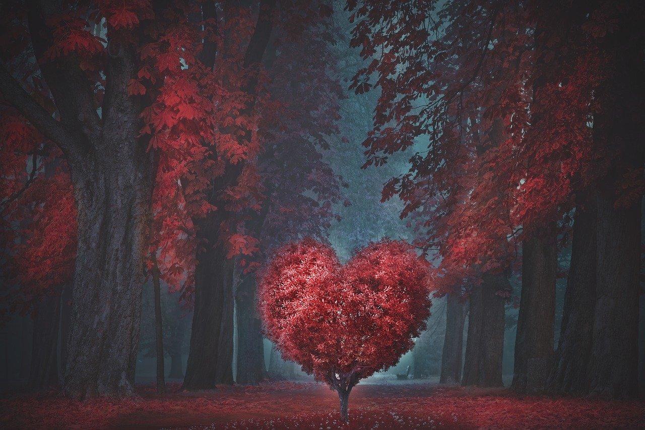 valentine-4805916_1280.jpg