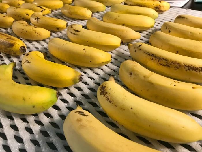 banana20021601.jpg