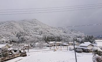 20200209雪