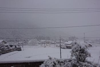 20200218 雪降り10