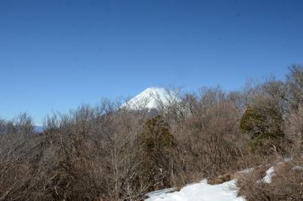 越前岳頂上から富士山