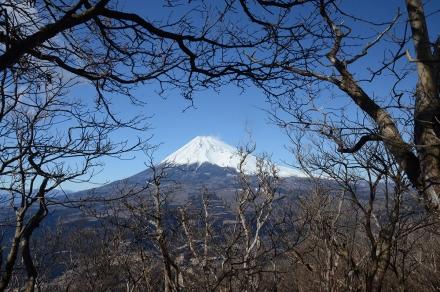 越前岳頂上直下から富士山1