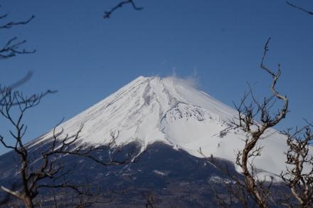 越前岳頂上直下から富士山2