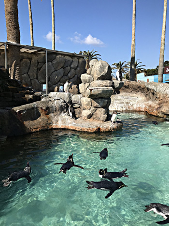 marinepark1