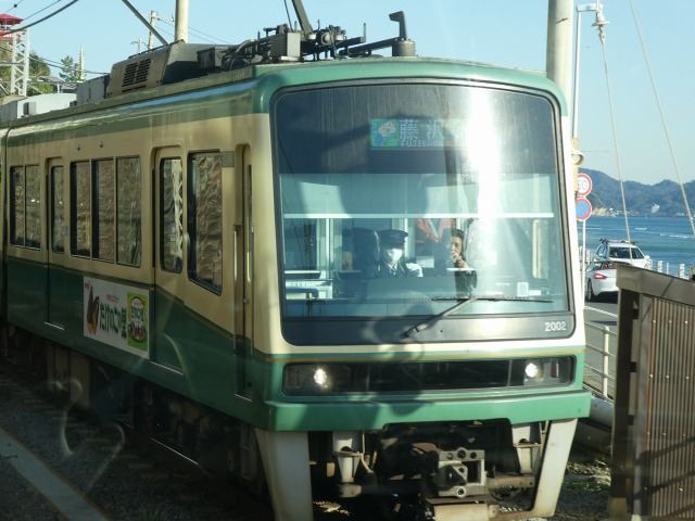 P1010995.jpg