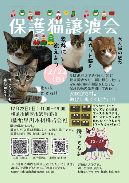 猫譲渡会案内12:22 (1)