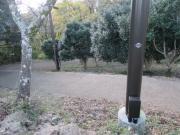 2019/12/1弘法山公園