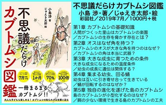 01甲虫図鑑表紙
