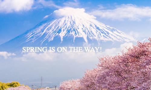 日本が対象 Accor ALL Japan 最大20%OFFキャンペーン