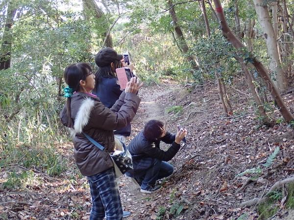 「光る木」観察会3日目②