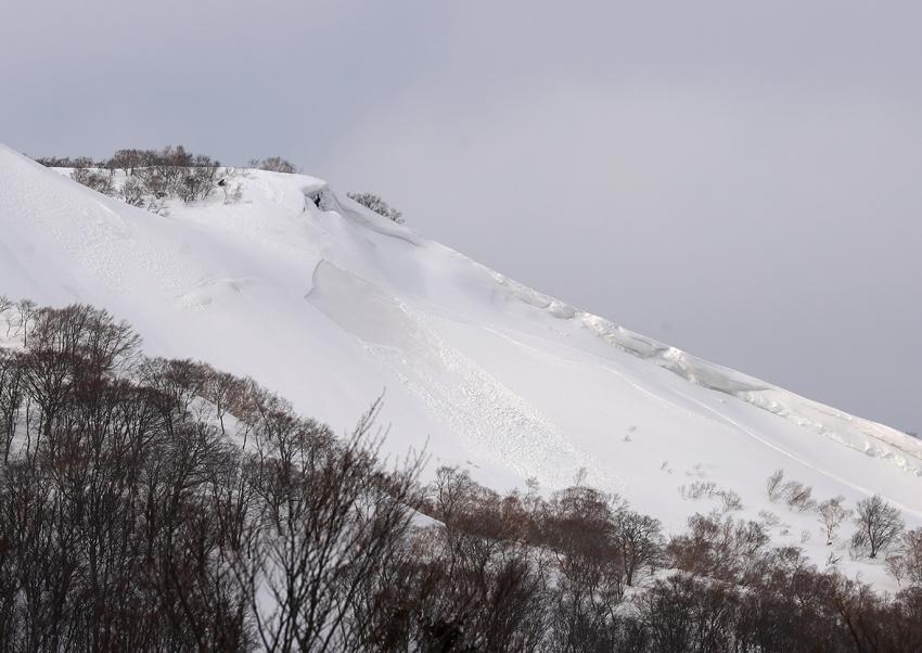 20200229東栗駒山から続く尾根の雪崩痕跡