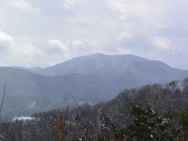 200209-014.jpg