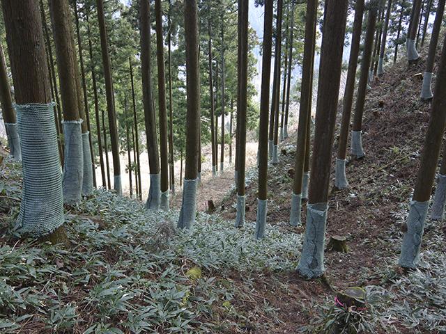 200224-025.jpg