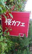 桜カフェ4 (1)