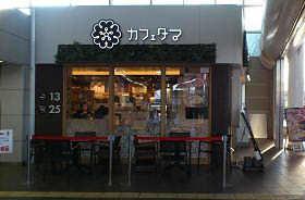 かふぇたま (1 )